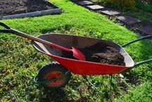 Fidancılık ve bitki üretimi