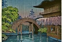 koistu tsuchiya