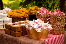 Party Theme: Picnic on the farm / by Lori Mendoza