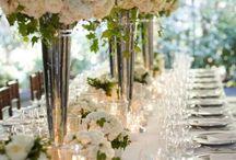 weddings ideas / dreams come true