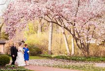 Our Wonderland Wedding at Gramercy Mansion April 18, 2015 / These pics are from our AMAZING wedding this past April. It was a trip down the rabbit hole, straight to the Mad Hatter's Wonderland tea party!!!