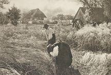 Alfred Stieglitz / 1864-1946, dedicó su carrera(50 años)a que fuera reconocida la fotografía como arte, al igual que la pintura. Viajó por Europa obteniendo prestigio. En N.Y. tras trabajar en revistas y no quedar satisfecho, crea la suya propia Photo-Secession.Se cuenta entre uno de los cinco artistas más influyentes del Siglo XX.Los otros cuatro, fueron: Orson Welles(actor, productor y director de cine), Elia Kazan(Director y escritor de cine), John Ford (director de cine) y Man Ray (fotógrafo y pintor).