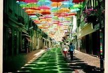 Multi Colored Visions
