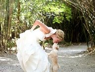 Wedding Photos / by Lisa Hughes