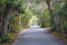 long and winding road / by Vivian Hale