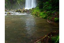 Waterfalls Victoria Australia
