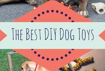 Dog toys/training