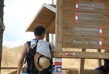 Via Francigena and spiritual routes in Tuscany
