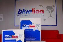 Blue Lion Moving / The best choice for Australian relocation services, from office moving to international relocations.