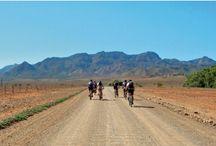 Bike races around Australia