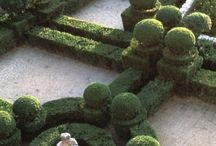 Topiary tips