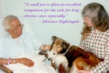 Animal Therapy / Animals that help people with disabilities