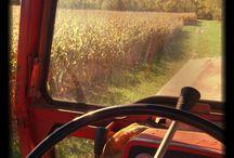 Farming! / by Caitlin Tokar