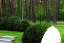 landscape design / Garden design and outdoor living