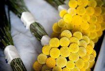 Żółte dekoracje ślubne