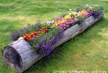 Garden - Recycled creativity / Smart ideas for your garden or balcony!!!