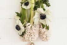 Fleurs,flowers,flores...fiori