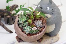 Clay ceramic