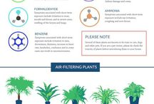 Air Quality Tips