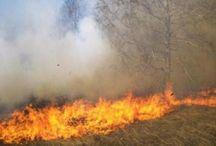 عاجل: حريق يجتاح مساحات من المراعي في مقاطعة كوبني