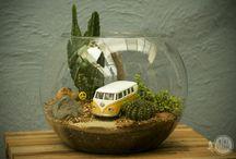Jardins mini