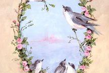 птички.животные