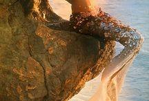 Mermaid. Femme fatale