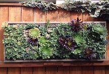 садовый декор, постройки / декорирование садового участка