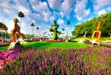 Disney / by Gabby Chudzik