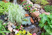 Landscaping ideas / by Carole Bronzino