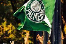Palmeiras ♡