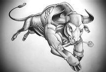 Býk ➰