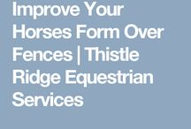 Equitation Tips / Easy Exercises for Better Riding if you would like to be a better rider, then try some of these tips!