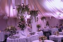 Wedding Flowers & Center Piece Ideas / by Melodee Paul