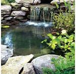 Ponds and Fountains
