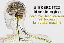 Exercitii pentru creier