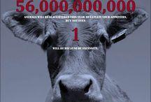 Animal Liberation / Hayvan Özgürlüğü