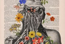 Floral Anatomy