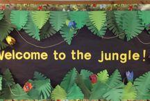 Safari/Jungle