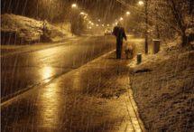Rain / by Anna Martinez-Argento