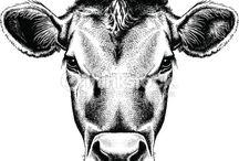 cow tattoo