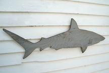 köpekbalığı ve balık