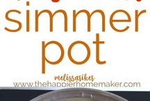 Simmer Pot recepies