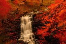 Autumn - My Fav!