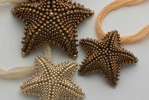 deniz yildizi