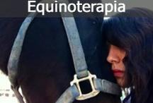 Equinoterapia / Es una terapia innovadora que utiliza al caballo como instrumento terapéutico, pues el caballo representa una fuente inagotable de estímulos que contribuyen a mejorar la confianza en sí mismo, a elevar la autoestima, y favorecer la relajación tan necesaria en el proceso de recuperación del adicto.