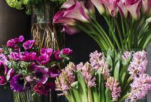 Flor cotada