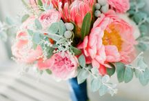 Flowers, Blooms & Boquets - For Weddings or just for fun! / A board dedicated to flowers, blooms and boquets.