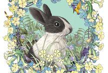 Coniglietti- Funny rabbits
