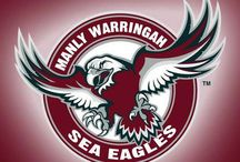 Manly Warringah Sea Eagles / Sitting On The Brookie Hill!